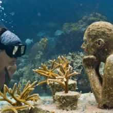 Underwater Museum of Art
